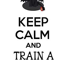 Keep Calm and Train a Night Fury by Annie3