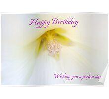 White Petunia Birthday Card Poster