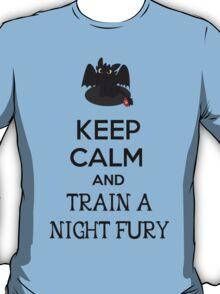 Keep Calm and Train a Night Fury T-Shirt