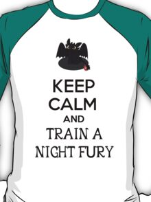 Keep Calm and Train a Night Fury T-Shirt