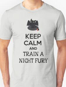 Keep Calm and Train a Night Fury Unisex T-Shirt