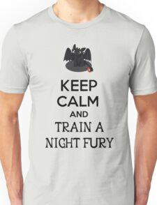 Keep Calm and Train a Night Fury Unisex T-Shirt