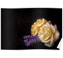 Lavender and Roses with Feathers Poster