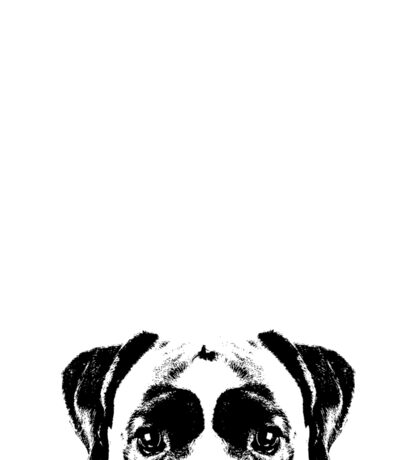 Boxer Dogs Face Sticker