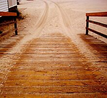 Stepping Onto the Beach......... ^ by ctheworld