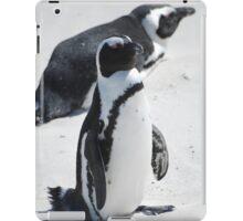 Penguin on Boulder Beach iPad Case/Skin