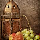 Pears and Grapes with Lantern by Ellesscee