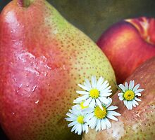 Pears and Daisies by Ellesscee