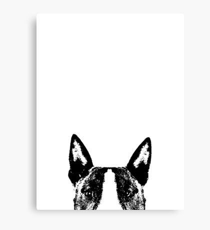 Bull Terrier Dogs Face Canvas Print