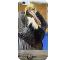 What Pelicans Do (1) iPhone Case/Skin