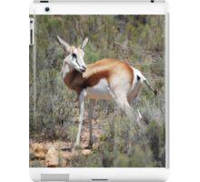 Springbok in the brush iPad Case/Skin
