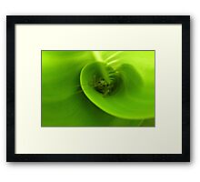 It's not that easy being green ... Framed Print