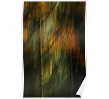 Artscape...........The enchanted Forest...... Poster