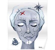 Global Warming Caused By Plastic Surgery Poster