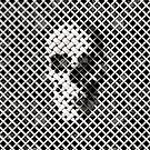 Wicker Skull by Ali Gulec