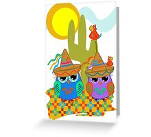 Cute Sombrero Owls, patterns and  Parrots Greeting Card