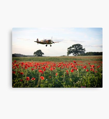The Lone Fighter Canvas Print