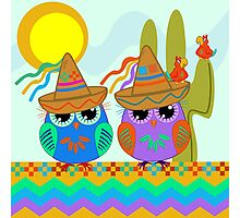 Owls with Sombrero hats under the Mexican sun Photographic Print
