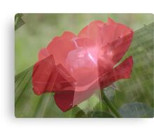 Layered Rose And Building Canvas Print