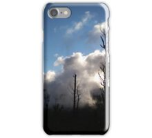 Rising from Ashes iPhone Case/Skin
