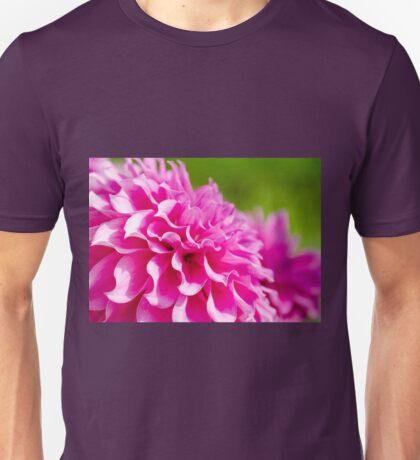 Pink Frilly Dahlia Unisex T-Shirt