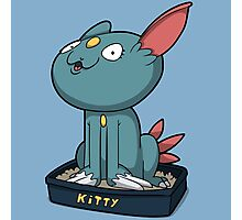 Cutey Kitty Photographic Print