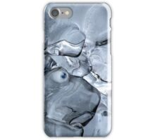 1.12.2016: Brown Hare of Ice iPhone Case/Skin