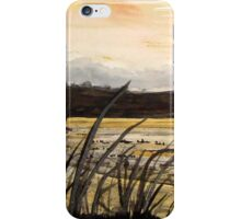 Back Bay Newport Beach iPhone Case/Skin