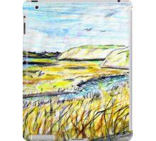 The Back Bay NB iPad Case/Skin