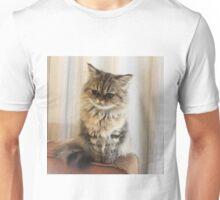 cute persian kitten Unisex T-Shirt