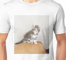 cute kitten! maine coon. Unisex T-Shirt