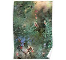 Butterflies in Windy Weather Poster