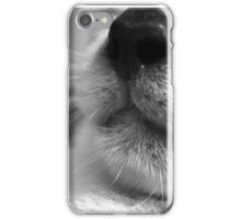 Feline iPhone Case/Skin