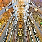 Inside the Sagrada Familia - Barcelona by Hercules Milas