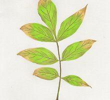 Fall Leaf (2) by zehava