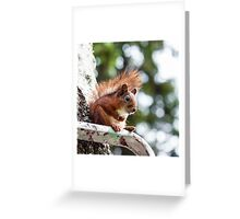 On a Break Greeting Card