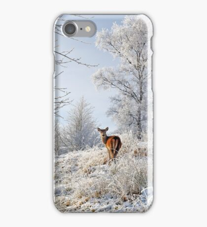 Glen Shiel Misty Winter Deer iPhone Case/Skin