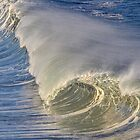 Breaking Wave by David Galson