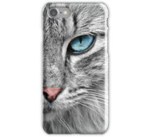 Beautiful Blue eyed Cat iPhone Case/Skin