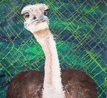Ostrich by kelseyfritsch