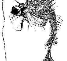 Angler Fish by Isaac Smith