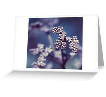 Archipelago Flowers Greeting Card