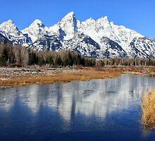Icy Mirror, Jackson Wyoming. by Ann  Van Breemen