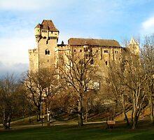 Liechtenstein Castle by Nathan Jekich