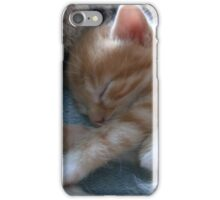 Kittens 2 iPhone Case/Skin
