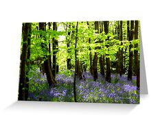 The Enchantment of Bluebells Greeting Card