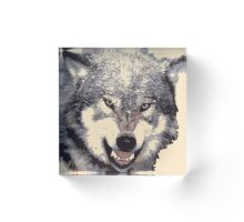 Wolf head in 5 colors Acrylic Block