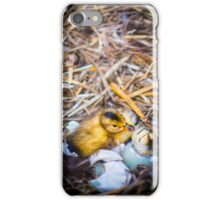 Freshly Hatched Duckling iPhone Case/Skin