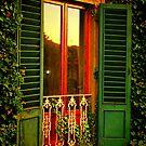 Golden Window Light by Barbara  Brown