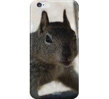 Went on Squirrel Hunt iPhone Case/Skin